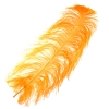 "Ostrich Wing Feathers 18-24"" Premium Quality 1/2 Lb Golden"